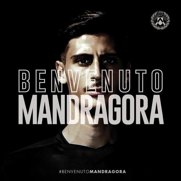 UC_Banner Mandragora_cb.jpg